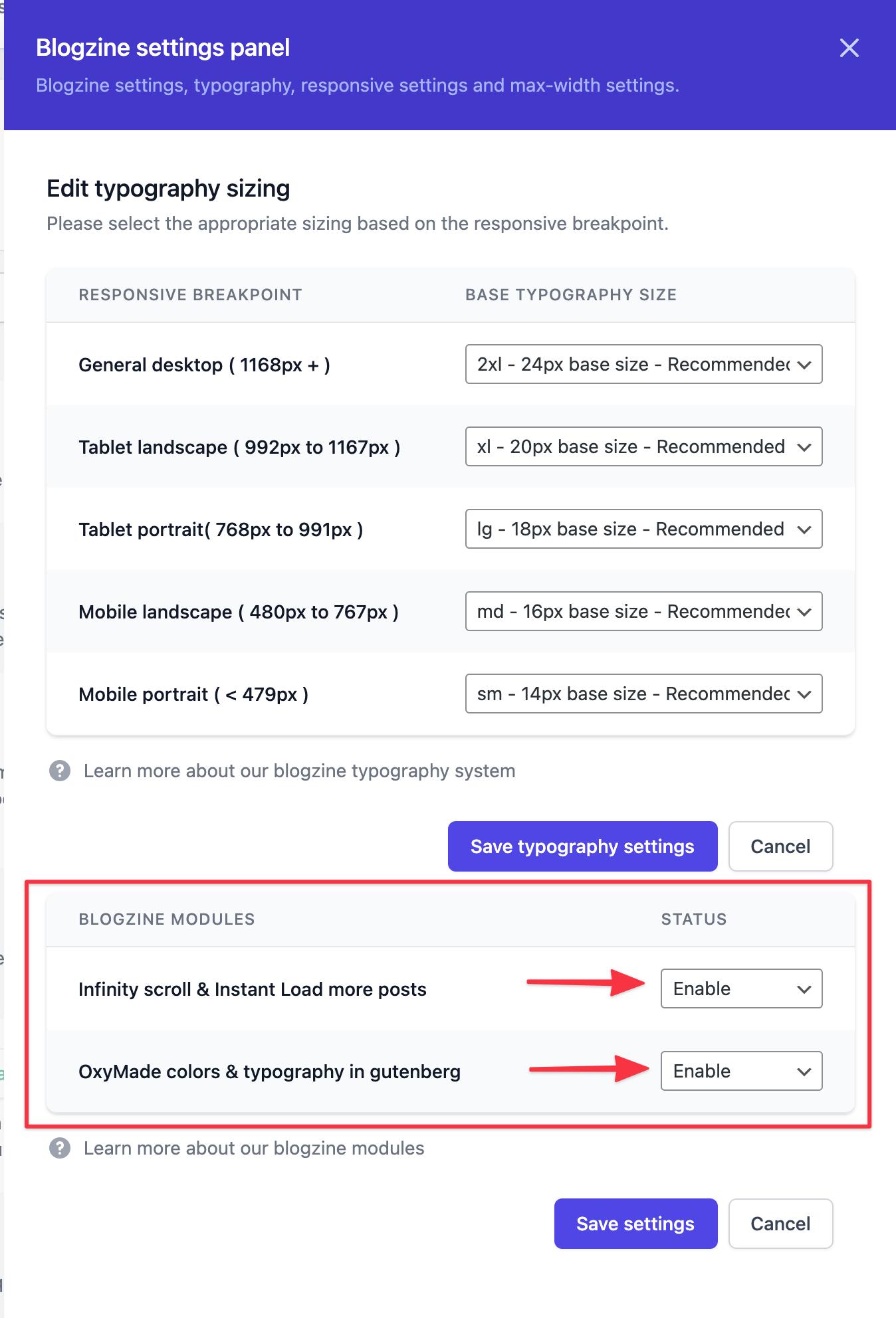 Blogzine settings panel